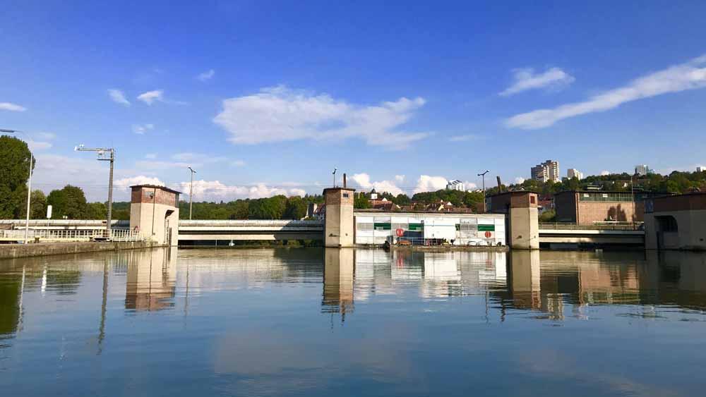 Eisvogel-Tour auf dem Neckar Bild